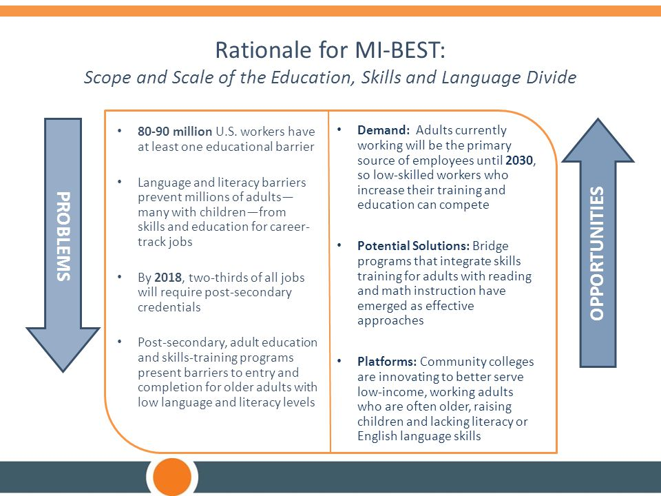 Rationale for MI-BEST: Scope and Scale of the Education, Skills and Language Divide