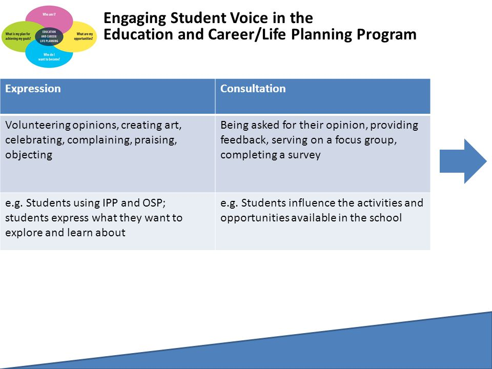 Engaging Student Voice in the