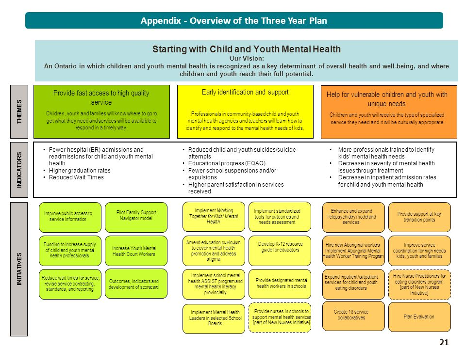 Appendix - Overview of the Three Year Plan