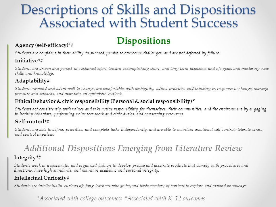 Additional Dispositions Emerging from Literature Review