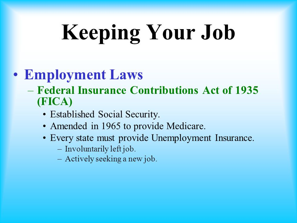 Keeping Your Job Employment Laws