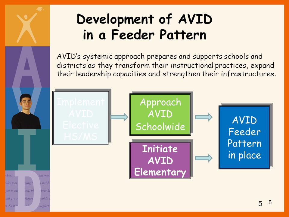 Development of AVID in a Feeder Pattern
