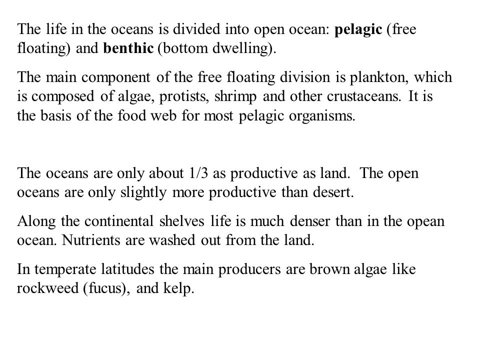 The life in the oceans is divided into open ocean: pelagic (free floating) and benthic (bottom dwelling).