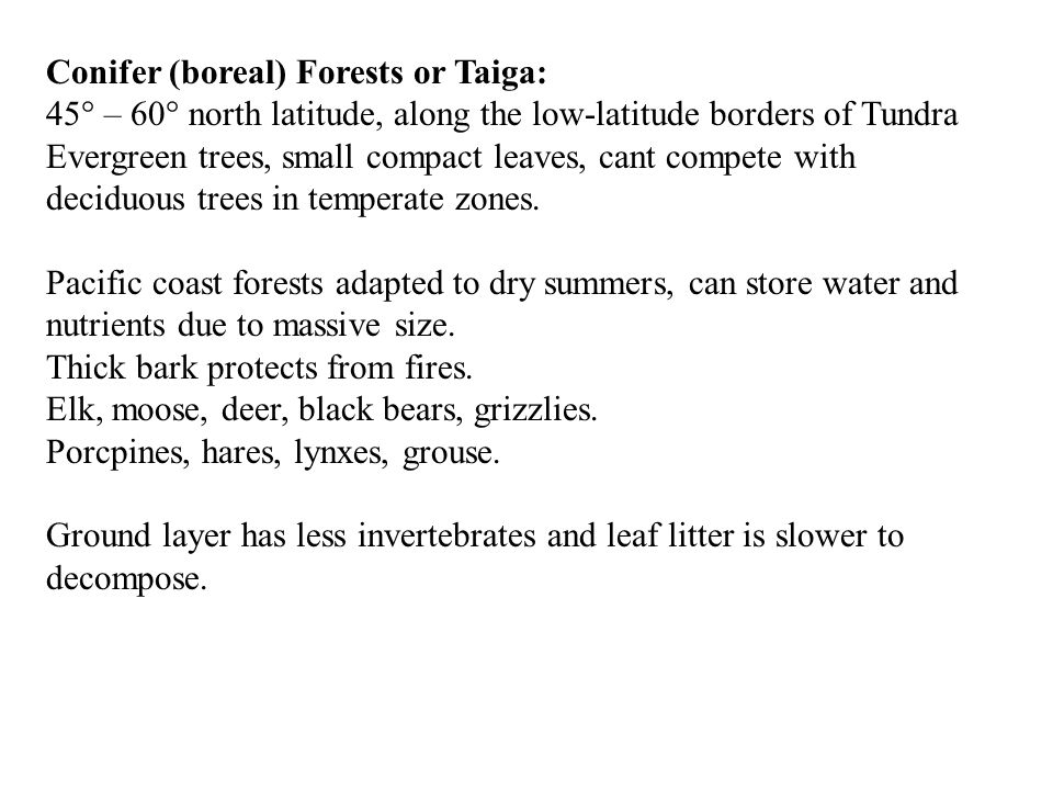 Conifer (boreal) Forests or Taiga: