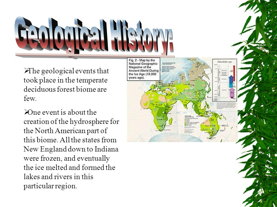 Geological History: The geological events that took place in the temperate deciduous forest biome are few.