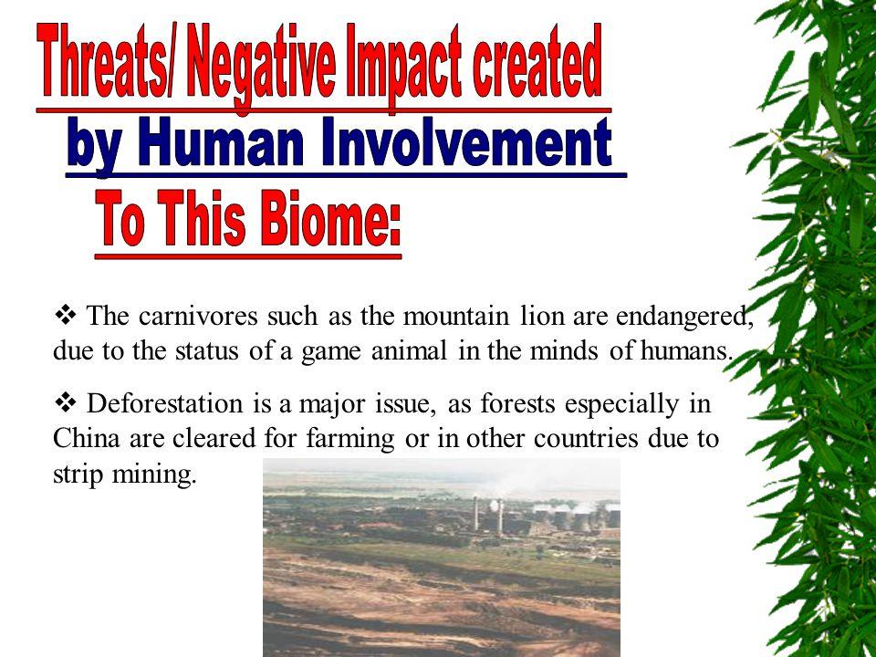 Threats/ Negative Impact created