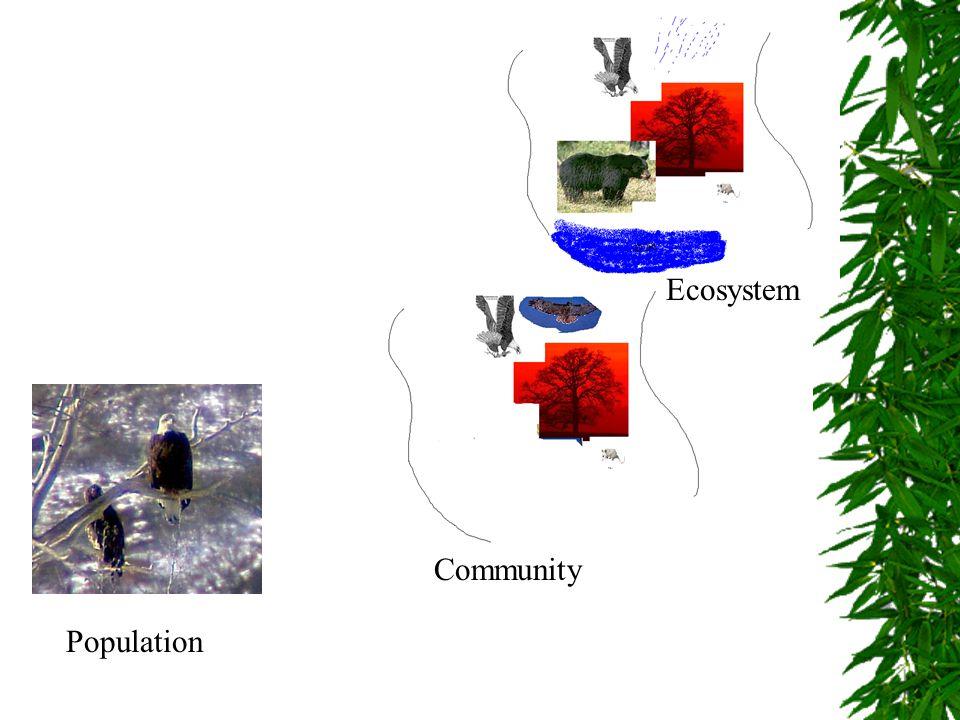 Ecosystem Community Population