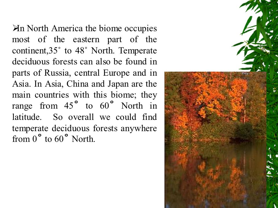 In North America the biome occupies most of the eastern part of the continent,35˚ to 48˚ North.