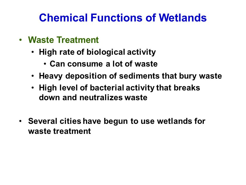 Chemical Functions of Wetlands