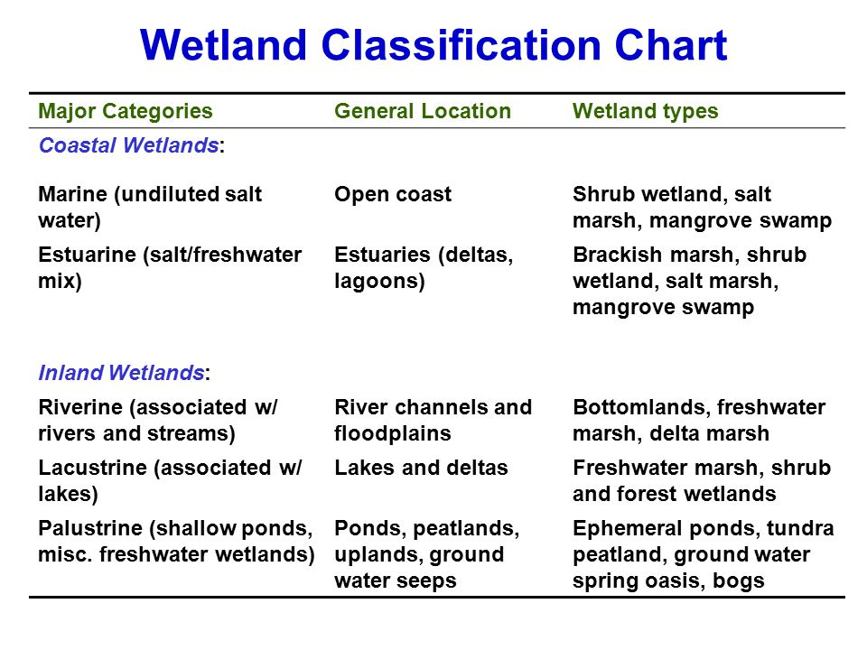 Wetland Classification Chart