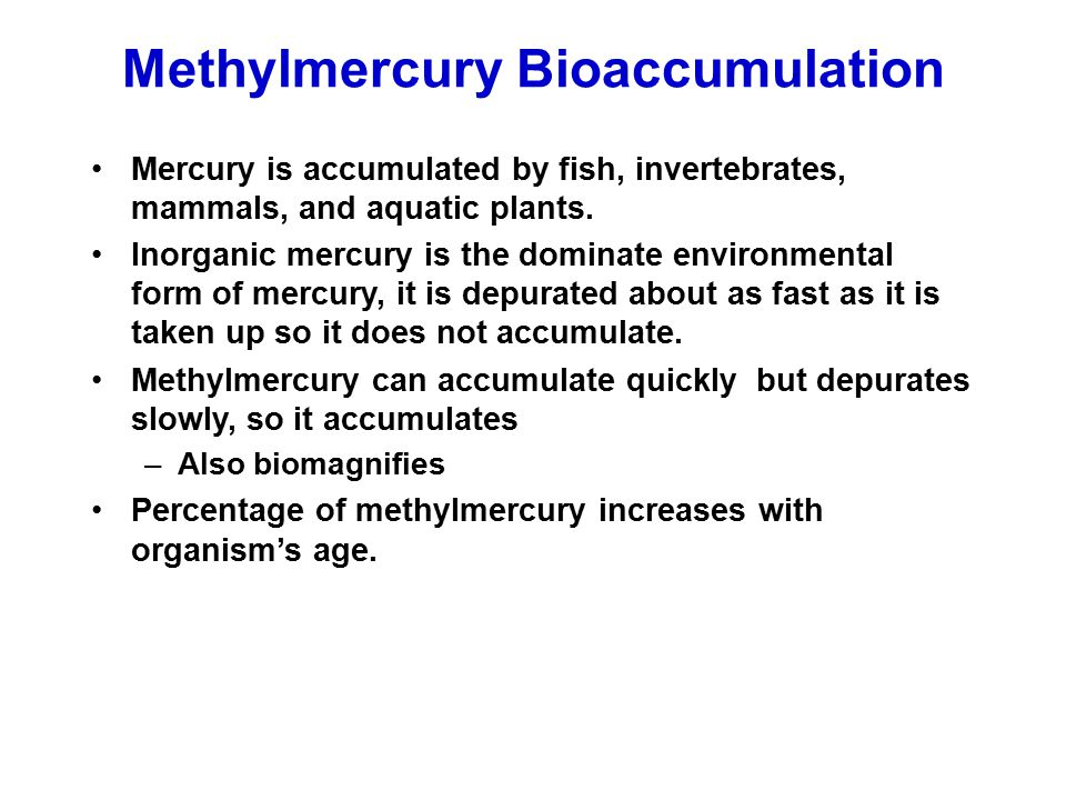Methylmercury Bioaccumulation