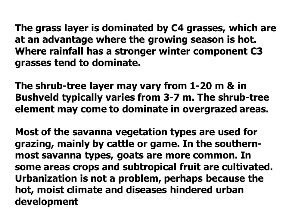 The grass layer is dominated by C4 grasses, which are at an advantage where the growing season is hot. Where rainfall has a stronger winter component C3 grasses tend to dominate.