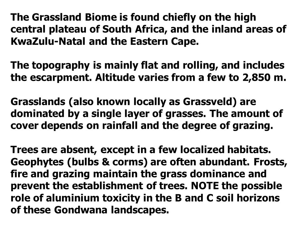 The Grassland Biome is found chiefly on the high central plateau of South Africa, and the inland areas of KwaZulu-Natal and the Eastern Cape.