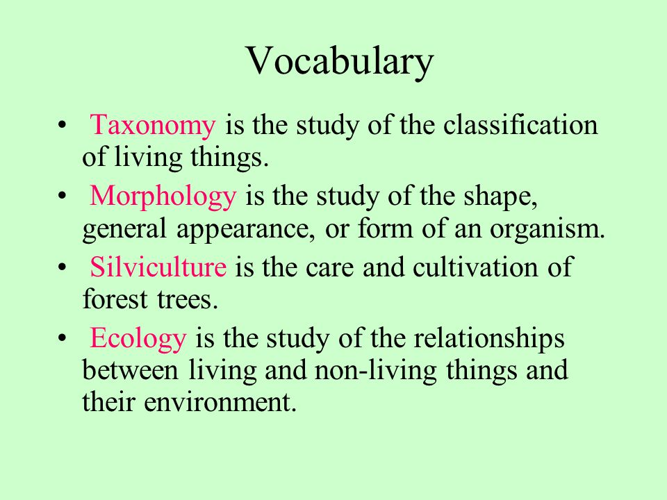 Vocabulary Taxonomy is the study of the classification of living things.
