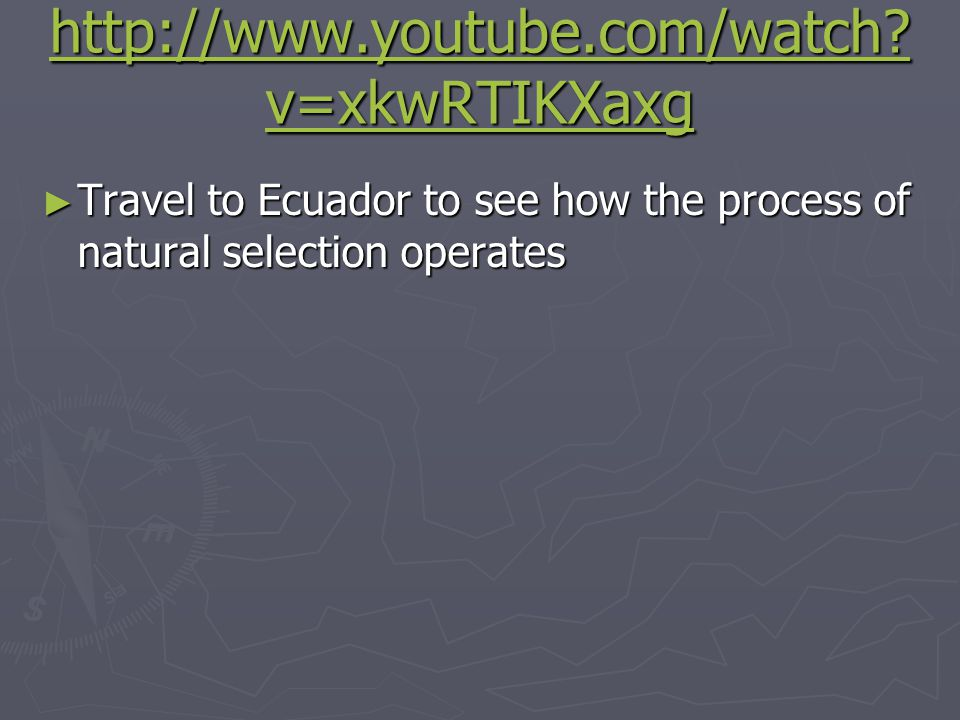http://www.youtube.com/watch v=xkwRTIKXaxg Travel to Ecuador to see how the process of natural selection operates.