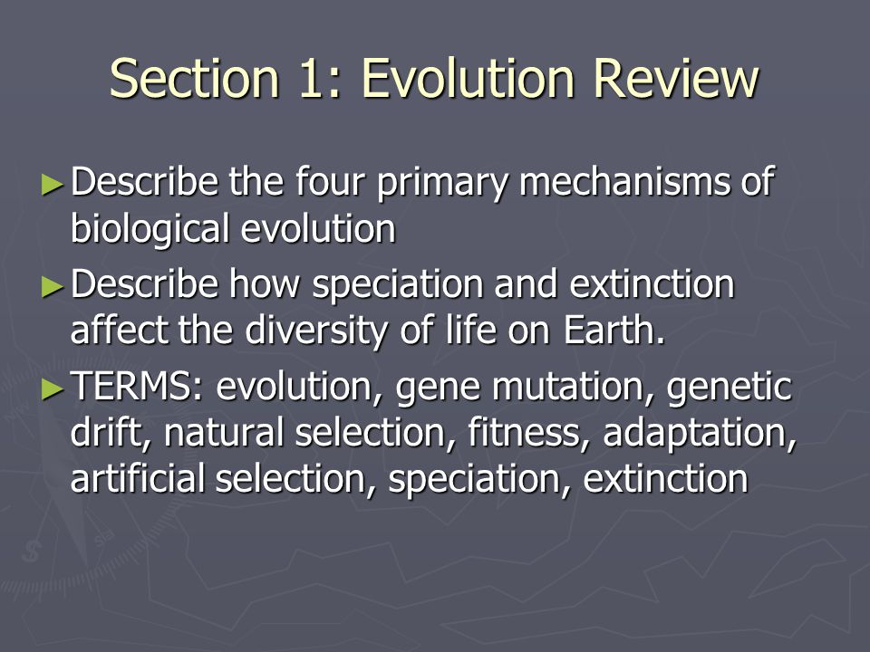 Section 1: Evolution Review