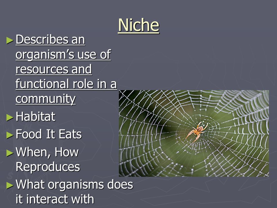 Niche Describes an organism's use of resources and functional role in a community. Habitat. Food It Eats.