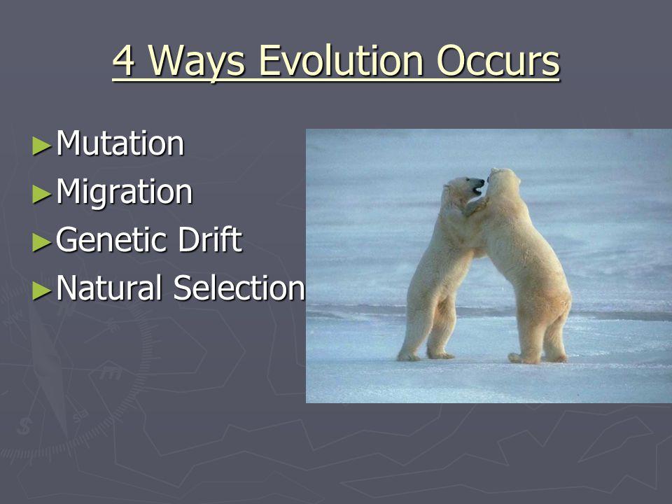 4 Ways Evolution Occurs Mutation Migration Genetic Drift