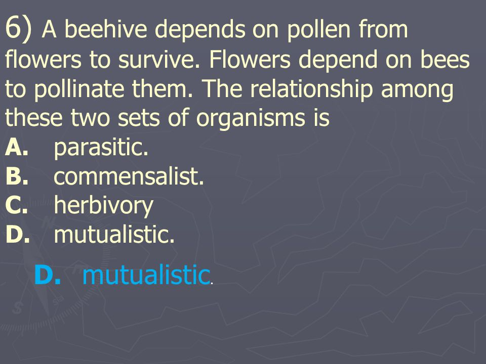6) A beehive depends on pollen from flowers to survive