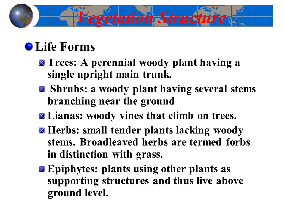 Vegetation Structure Life Forms