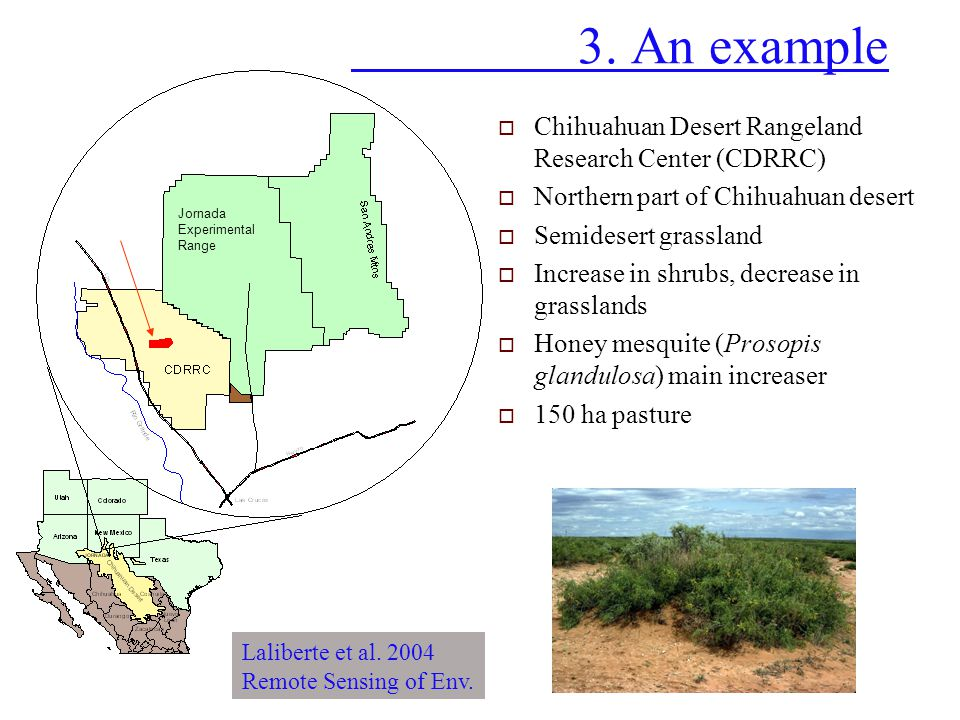 3. An example Chihuahuan Desert Rangeland Research Center (CDRRC)