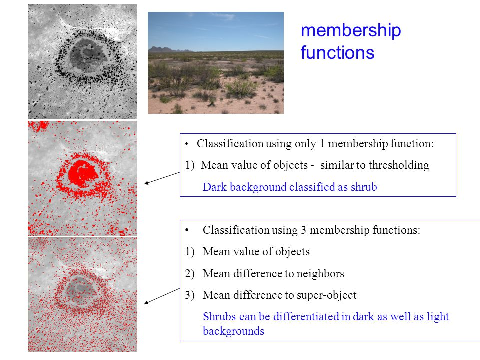 membership functions Classification using only 1 membership function: 1) Mean value of objects - similar to thresholding.