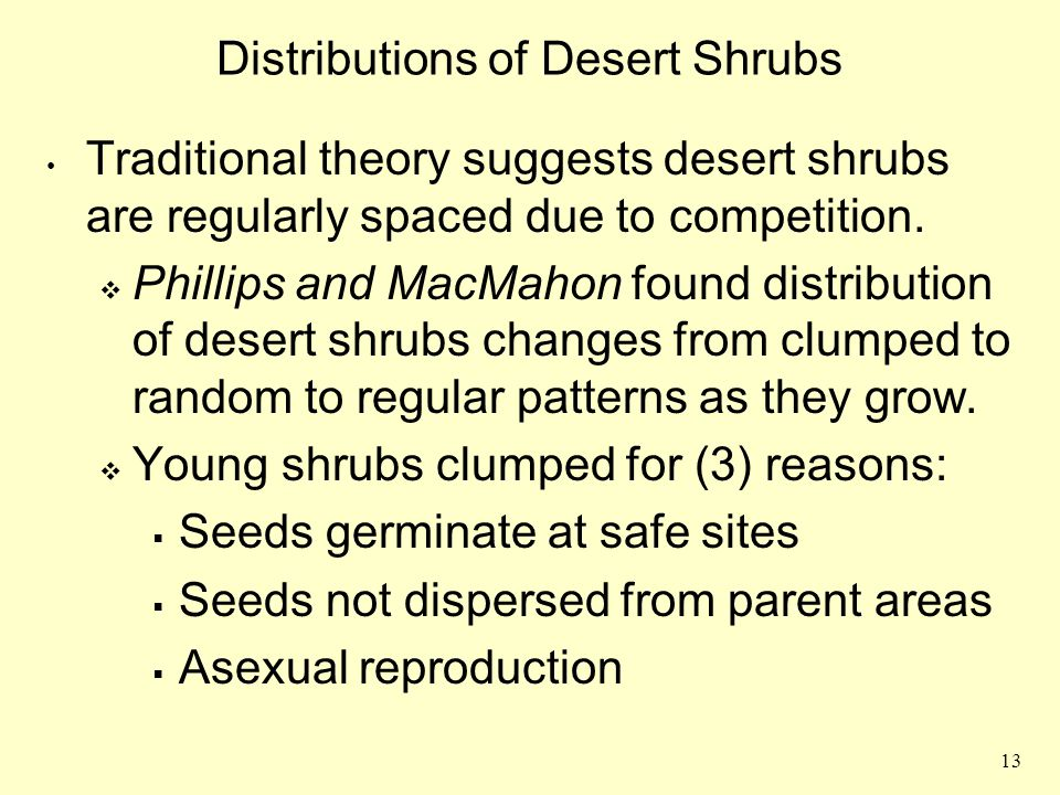 Distributions of Desert Shrubs