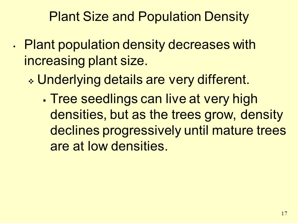 Plant Size and Population Density