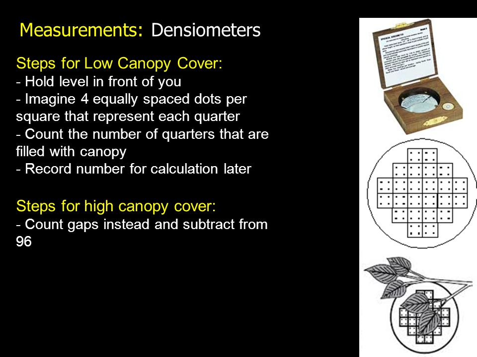 Measurements: Densiometers