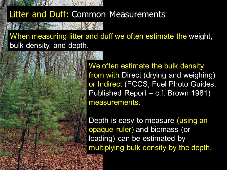 Litter and Duff: Common Measurements