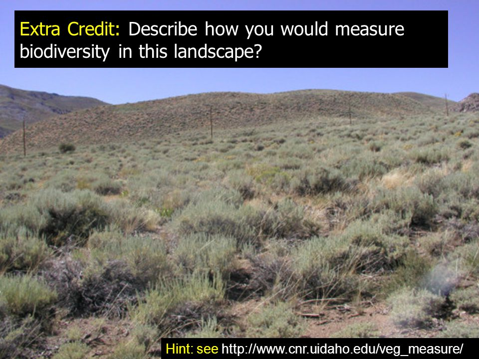 Extra Credit: Describe how you would measure biodiversity in this landscape