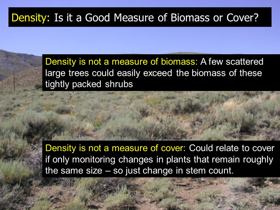 Density: Is it a Good Measure of Biomass or Cover