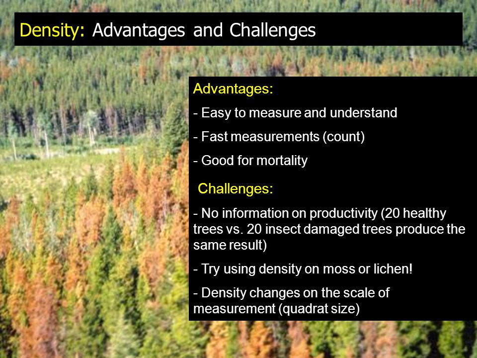 Density: Advantages and Challenges