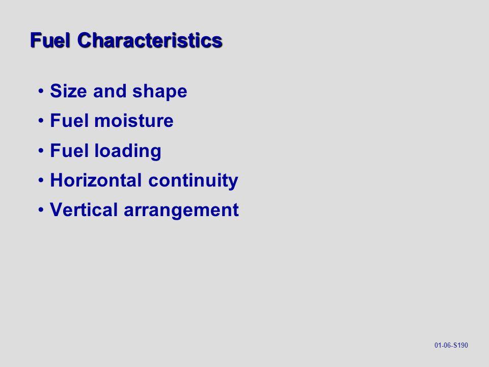 Fuel Characteristics Size and shape Fuel moisture Fuel loading