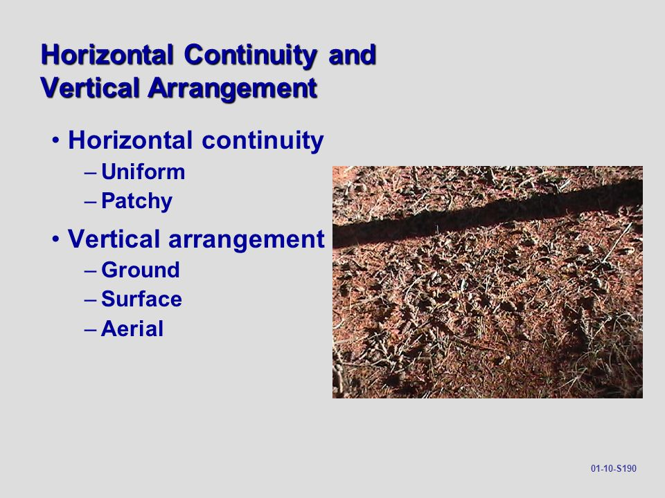 Horizontal Continuity and Vertical Arrangement