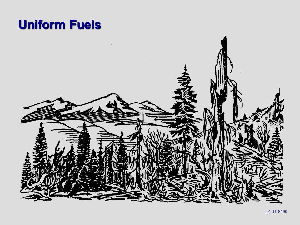 Uniform Fuels 01-11-S190