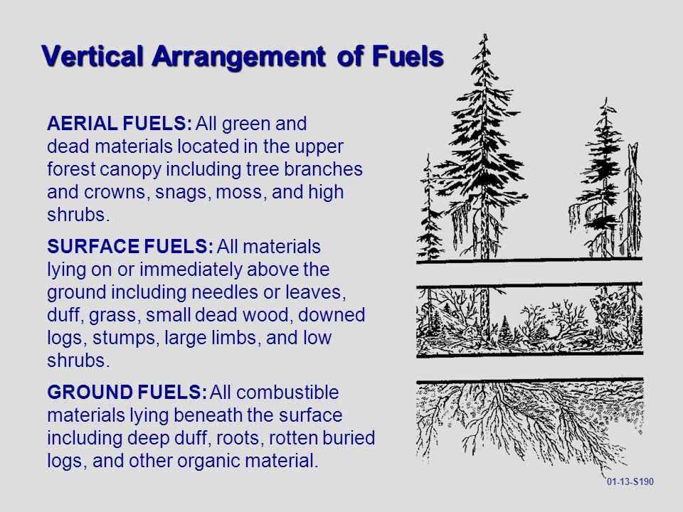 Vertical Arrangement of Fuels
