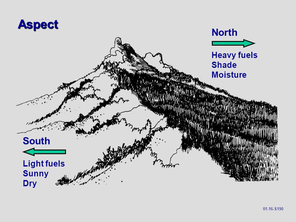 Aspect North South Heavy fuels Shade Moisture Light fuels Sunny Dry