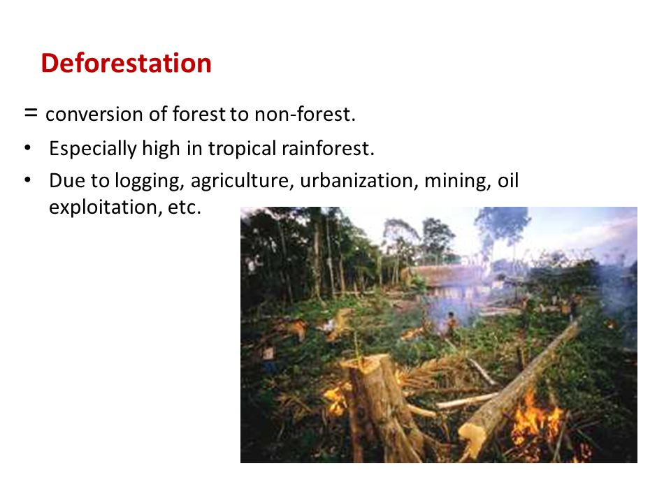 = conversion of forest to non-forest.