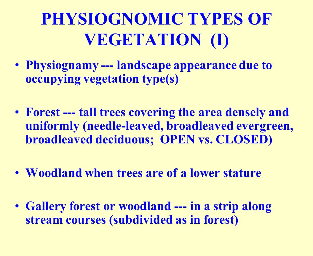 PHYSIOGNOMIC TYPES OF VEGETATION (I)