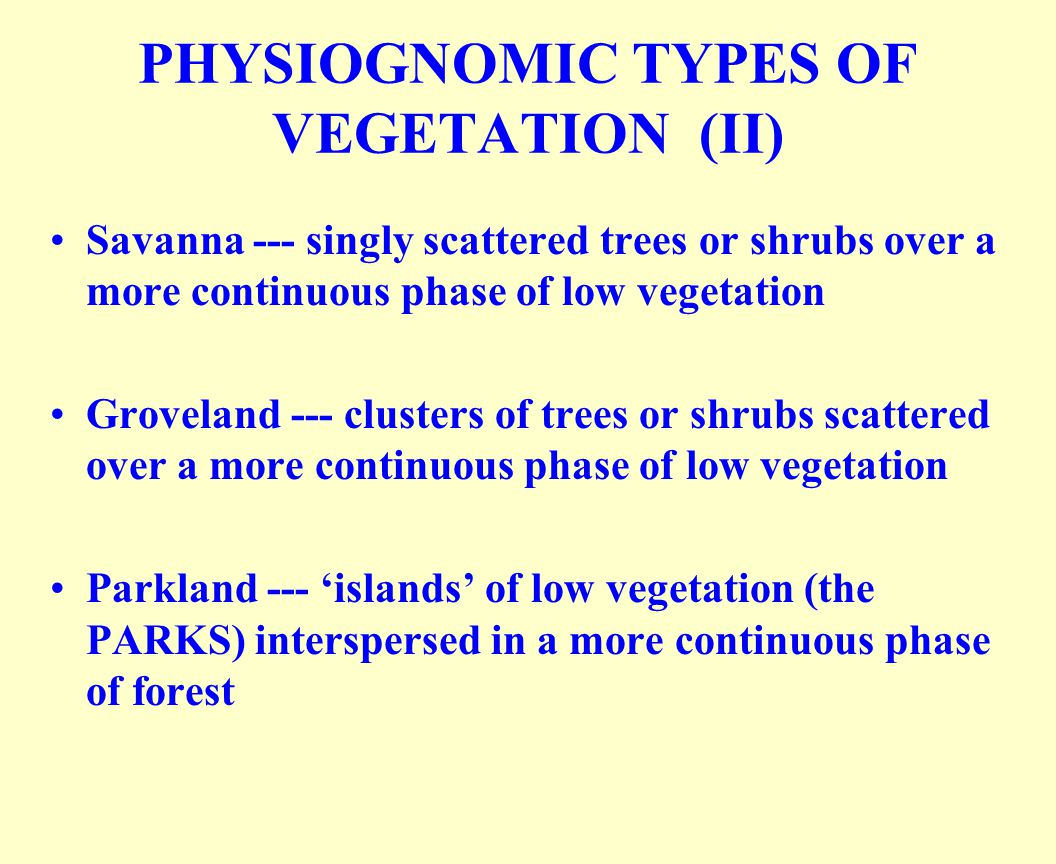 PHYSIOGNOMIC TYPES OF VEGETATION (II)