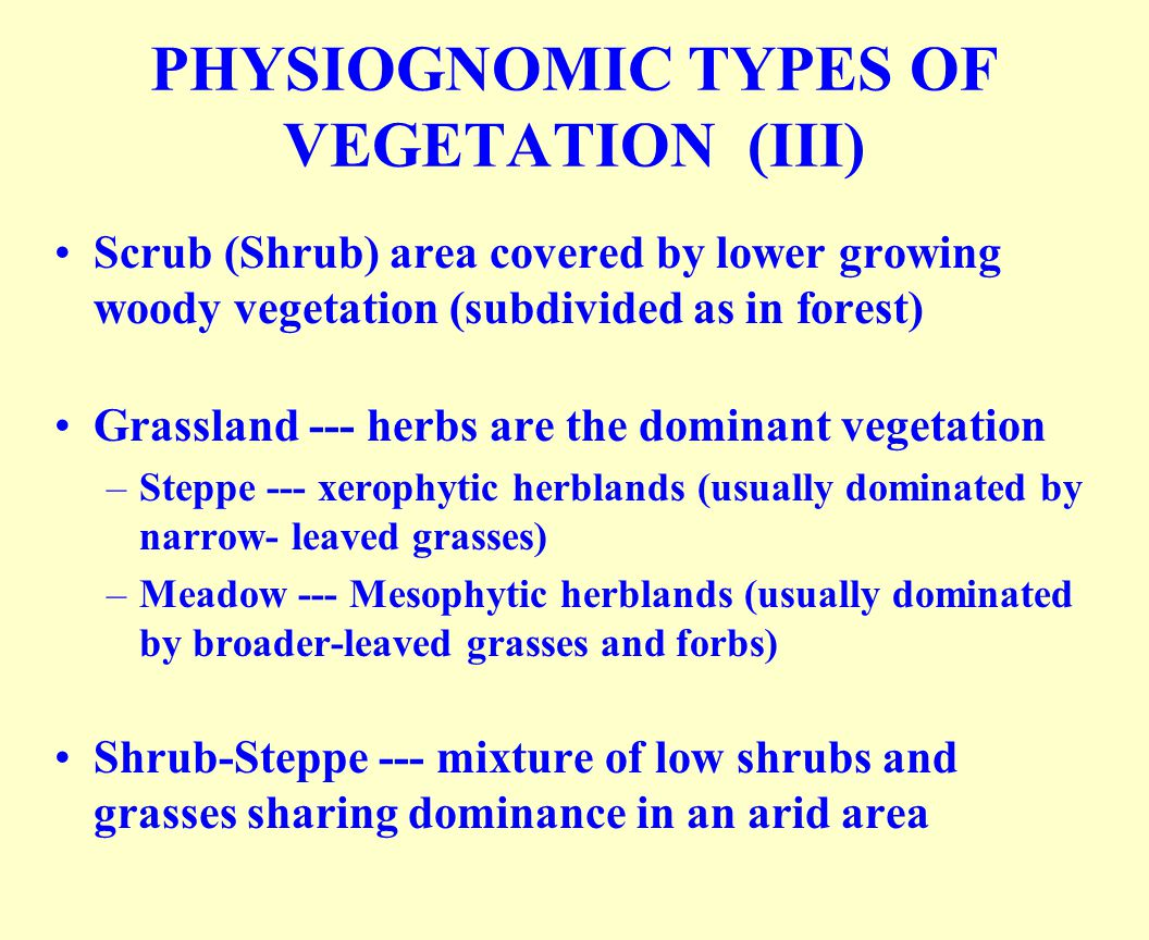 PHYSIOGNOMIC TYPES OF VEGETATION (III)