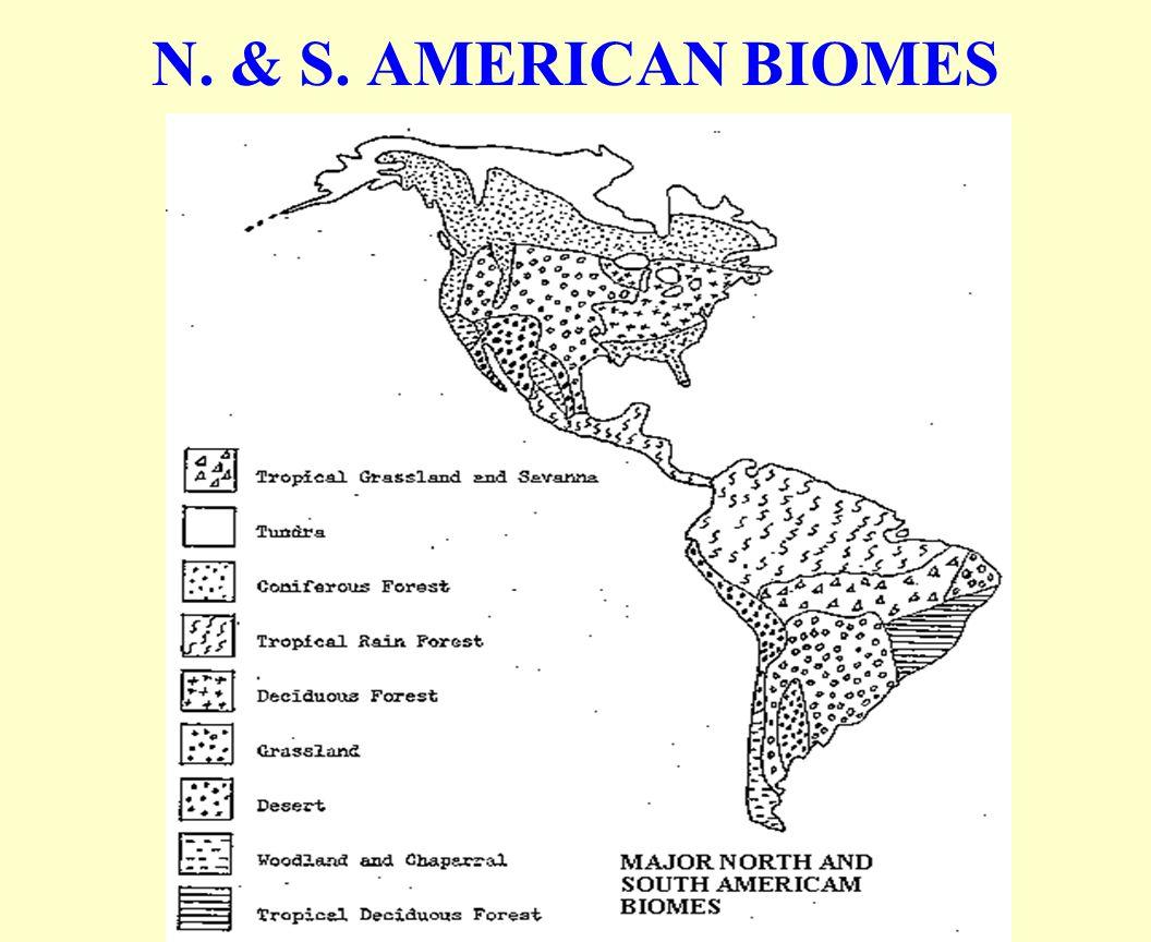N. & S. AMERICAN BIOMES