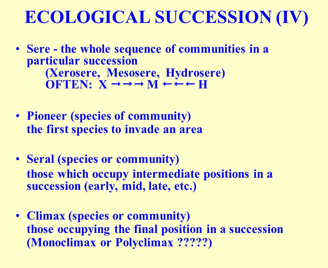 ECOLOGICAL SUCCESSION (IV)