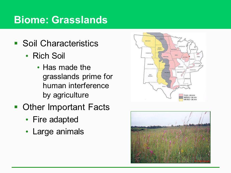 Biome: Grasslands Soil Characteristics Other Important Facts Rich Soil