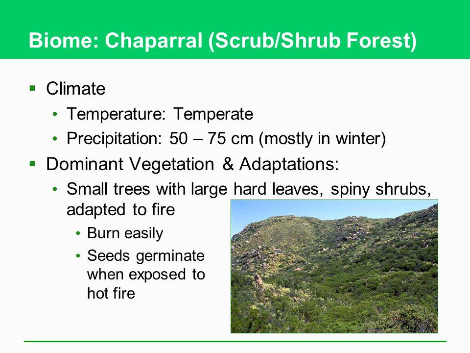 Biome: Chaparral (Scrub/Shrub Forest)