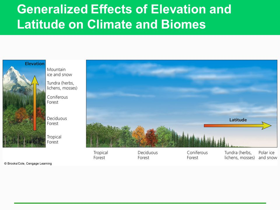 Generalized Effects of Elevation and Latitude on Climate and Biomes