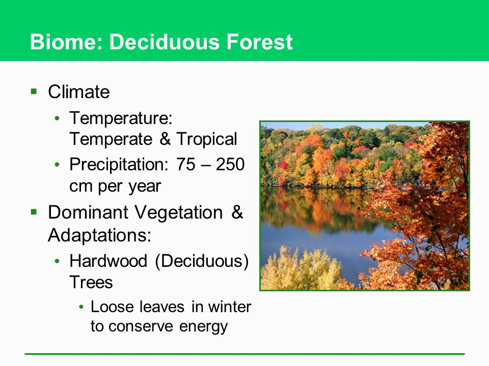 7 2 How Does Climate Affect The Nature And Locations Of