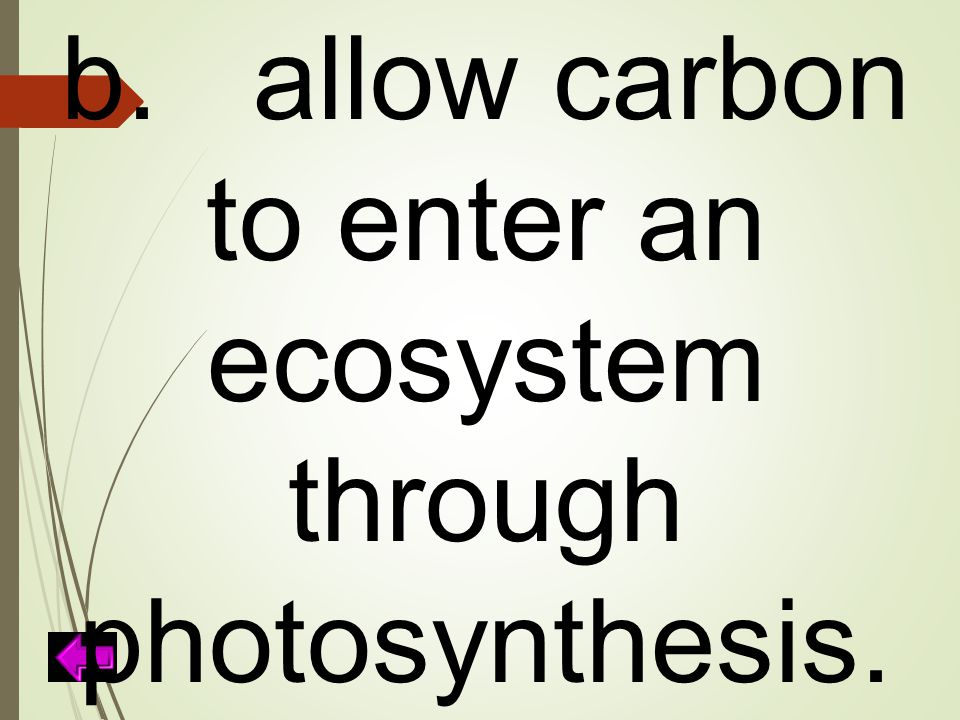 b. allow carbon to enter an ecosystem through photosynthesis.