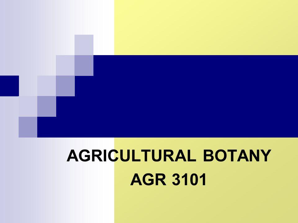 AGRICULTURAL BOTANY AGR 3101